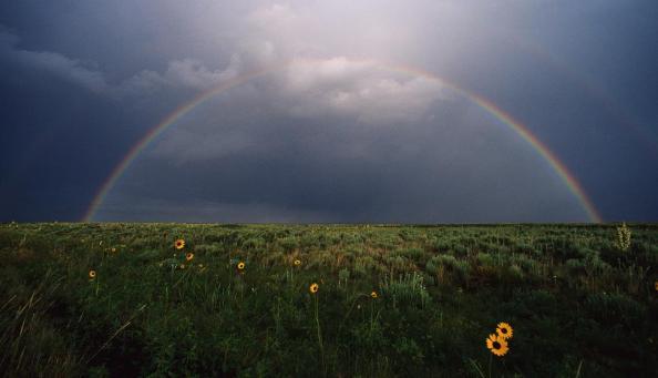 Arco-íris no céu nublado sobre um prado.