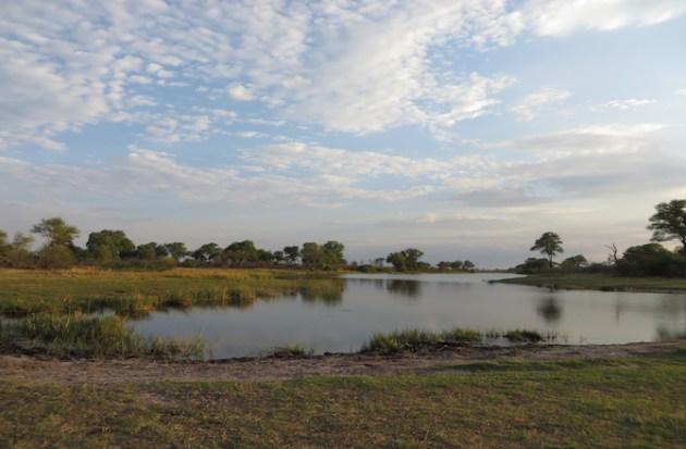 6-migration-african-landscape[1]