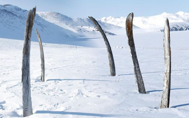 Yttygran Island – Whale Bone Alley in Siberia
