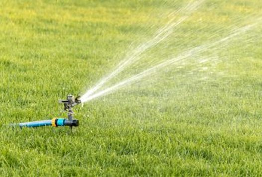 Do not use sprinklers for water wastage
