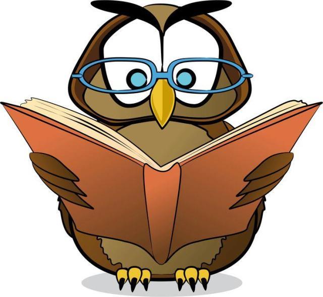 owl studying