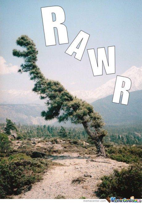 tree dianosure