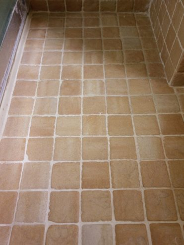 Best Way To Remove Black Mold From Tile And Grout