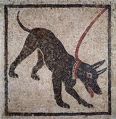 Mosaico de un perro