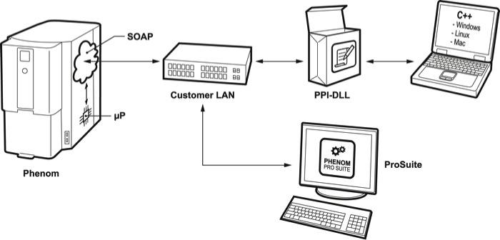 Phenom Programming Interface: Phenom Scripting Documentation