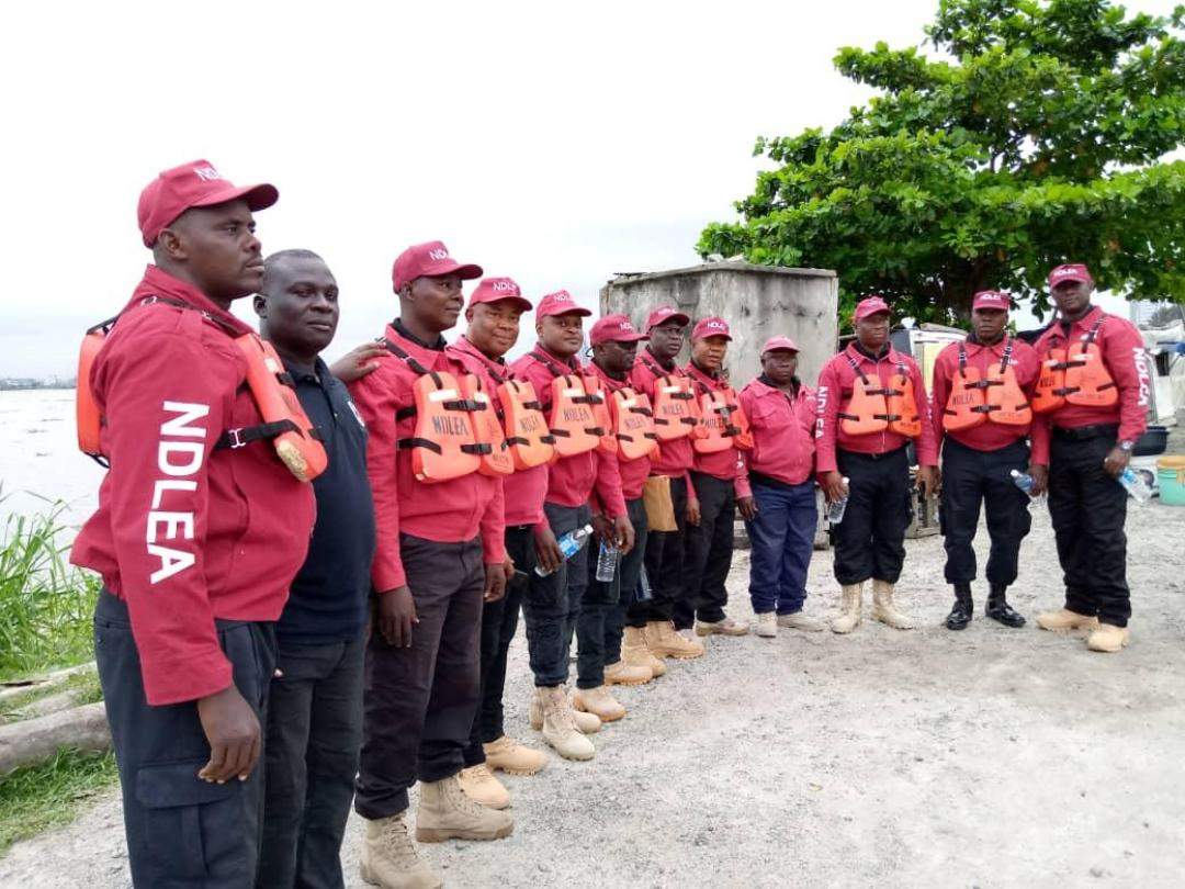 NDLEA Recruitment Portal 2021 See Available Vacant Positions