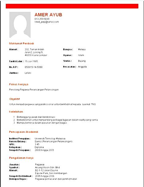 Resume Wizard Template Download  Free Samples  Examples  Format Resume  Curruculum Vitae