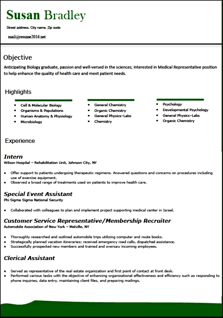 Modern Resume Template 2016  Free Samples  Examples
