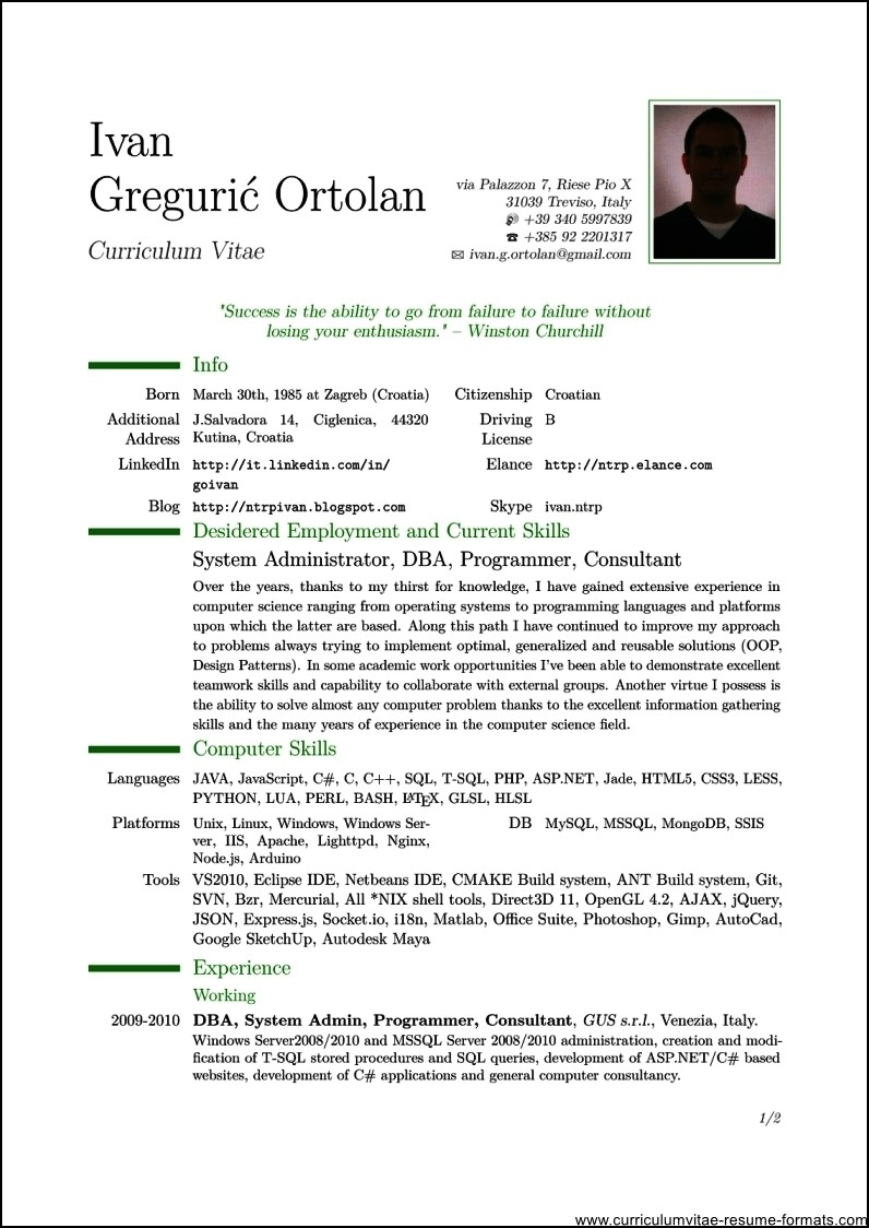 Professional Resume Template Pdf  Free Samples  Examples