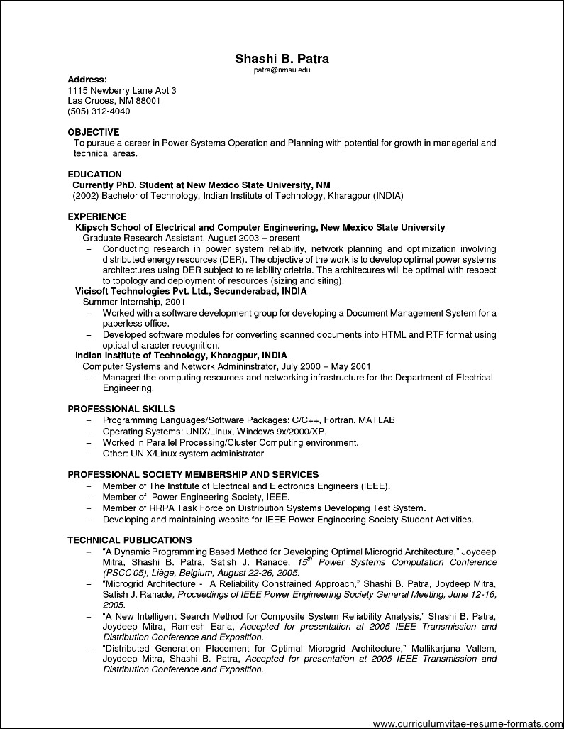 Sample Resume For It Professional Experience Free
