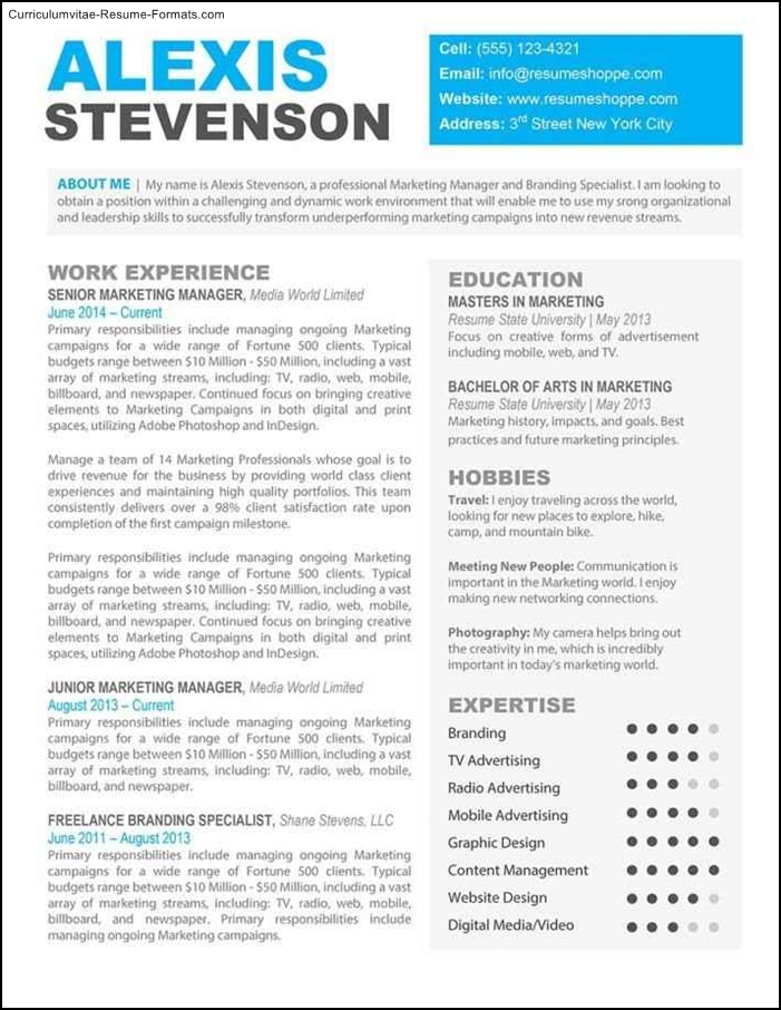 Beautiful Resume Template  Free Samples  Examples