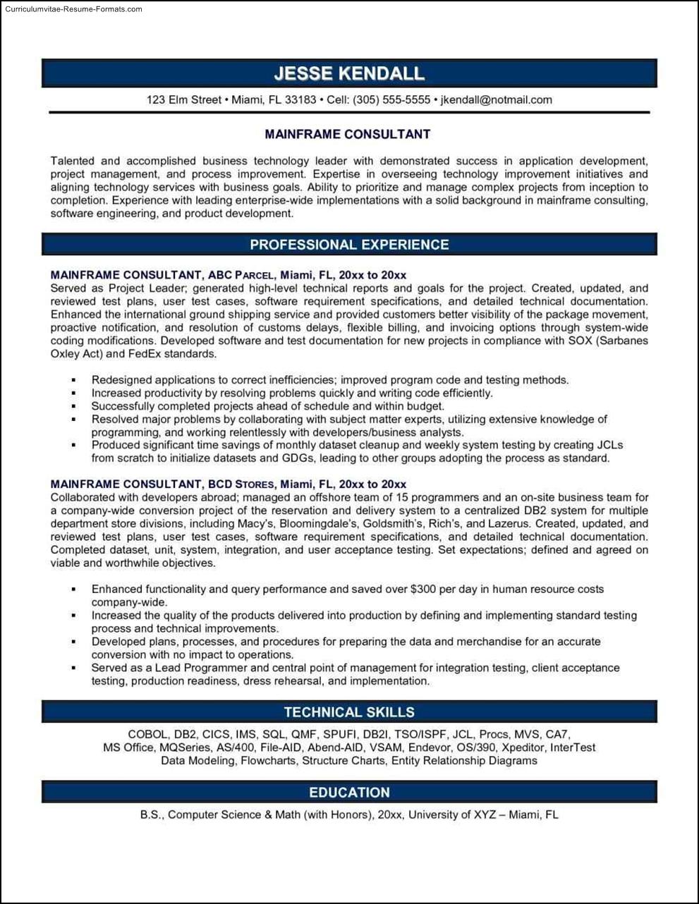Consultant Resume Example