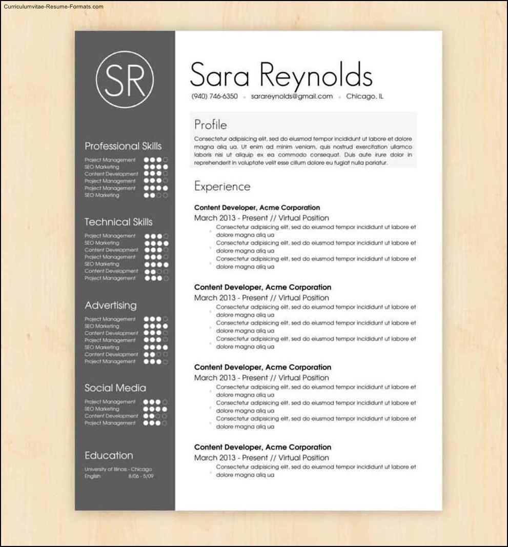 Cool Resumes Templates  Free Samples  Examples  Format Resume  Curruculum Vitae