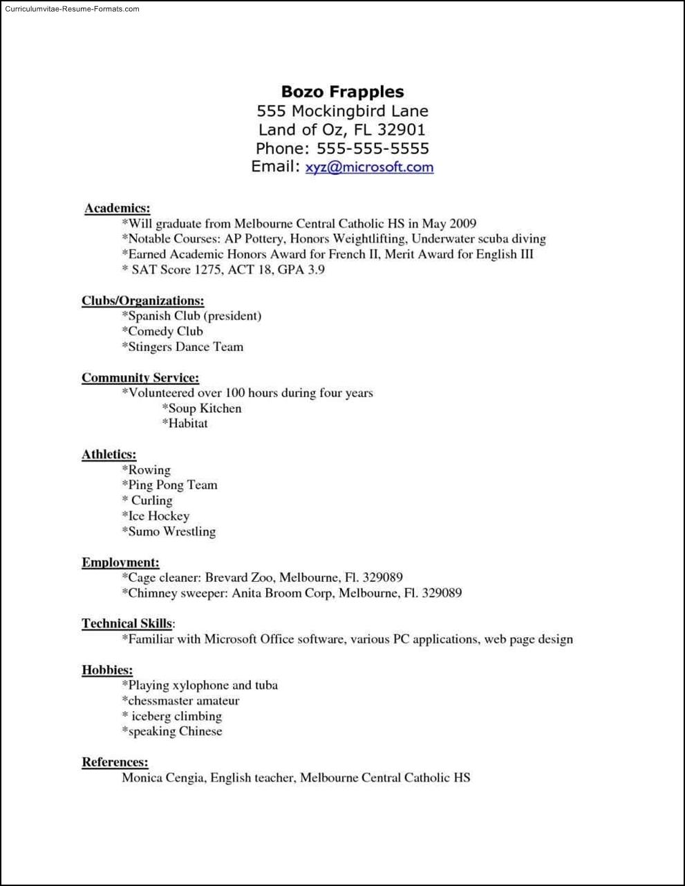 Hockey Resume Template Free Samples Examples Amp Format Resume Curruculum Vitae