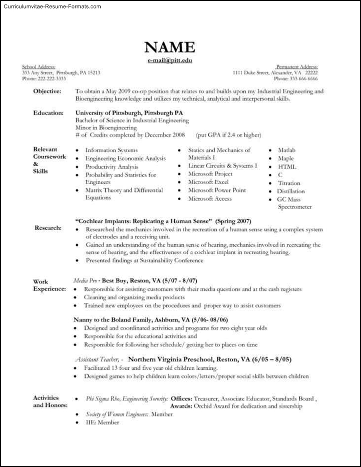 nanny template resume