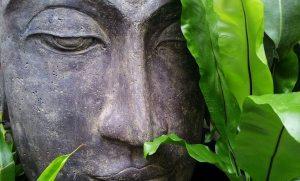 thai healing curry