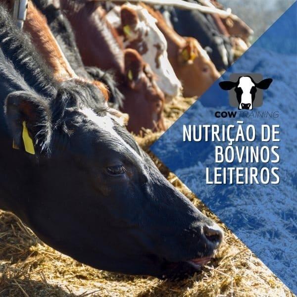Curso Nutrição e Manejo de Vacas Leiteiras