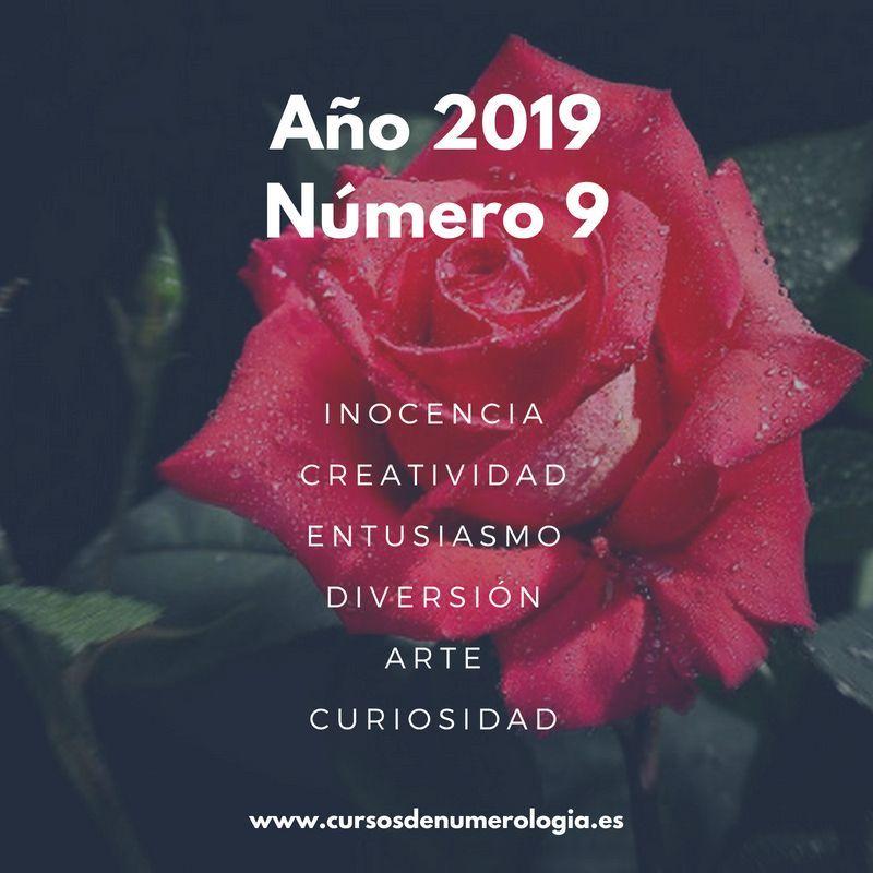 año numerológico 2019 número 9