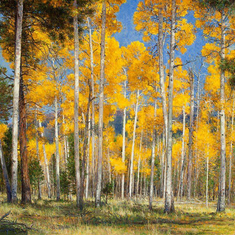 Autumn Comes to Hart's Prairie
