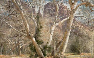 Winter Textural Debut