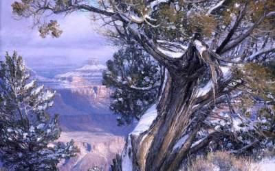 Canyon Guardian