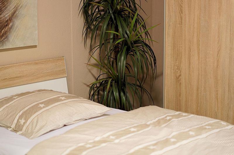 Pianta Camera Da Letto Ossigeno : Letto piante camera da letto piantina camera da letto piante