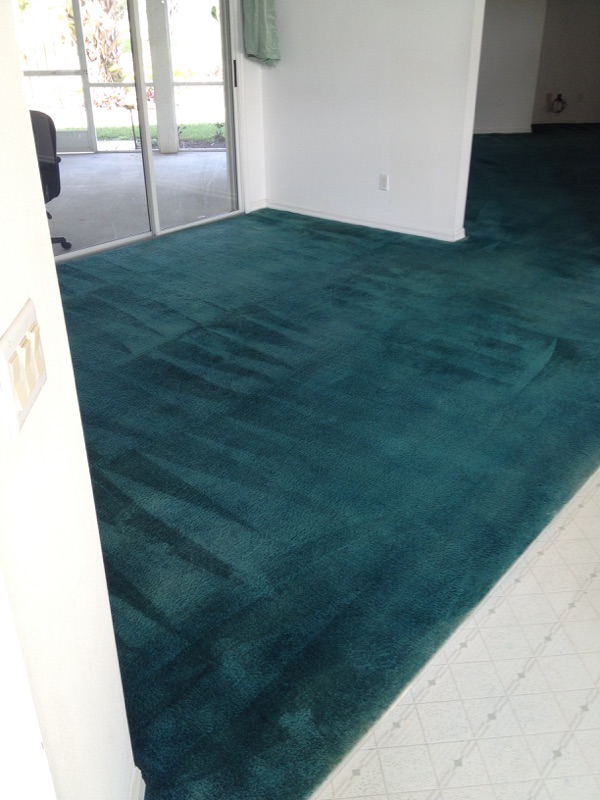 leather sofa cleaning shampoo what is a power motion gallery - custom carpet   fort pierce commercial ...