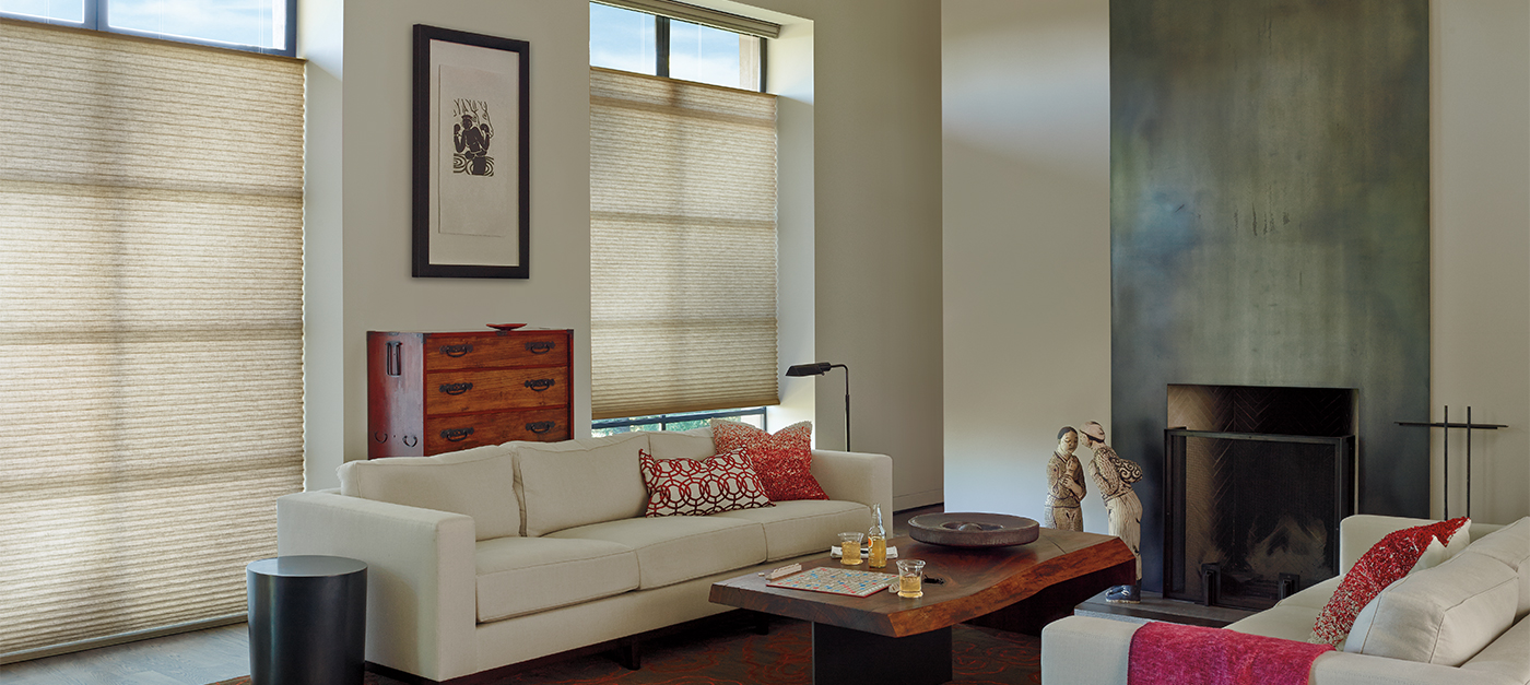 Hunter Douglas Alustra Duette Architella in Leela Escape