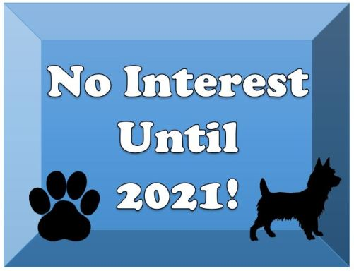 No Interest Until 2021