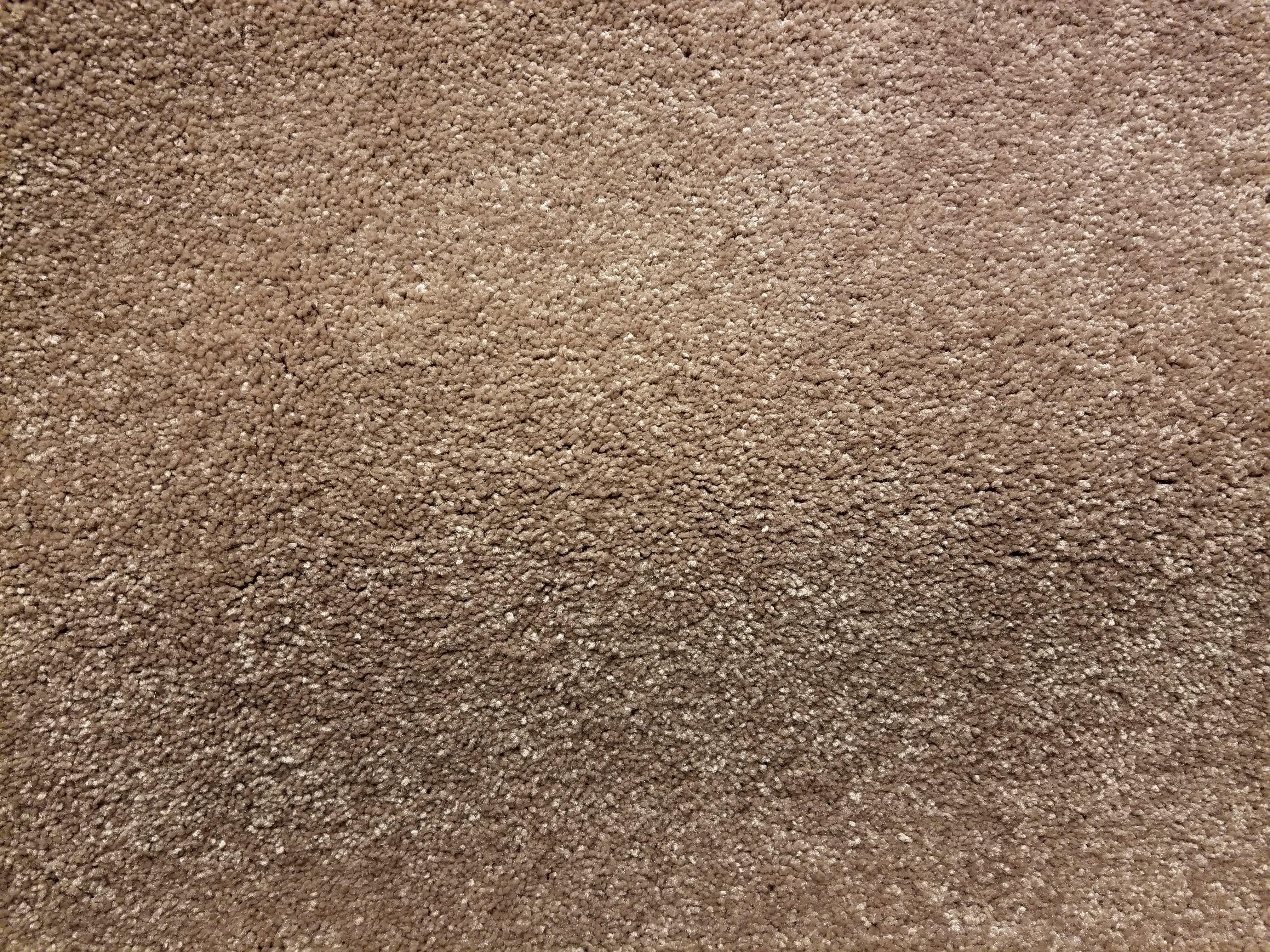Mohawk Carpet - Serene Sierra in color Cedar Shingles - 75oz Everstrand PET - 12' Wide - In Stock Clearance