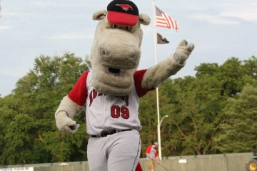 Rally, the St. Joseph Mustangs mascot