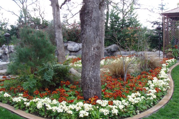 fall & winter flower beds - landscape