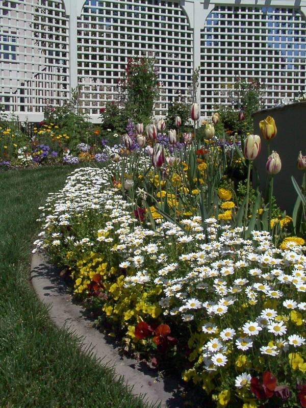 fall & winter flower beds - landscape