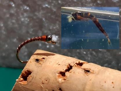 Hot Chocolate Chironomid Pupa Fly Comparison