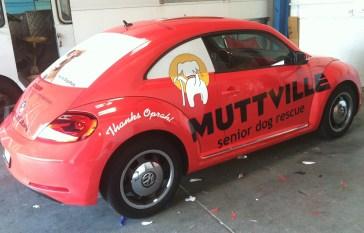 muttville car wrap-06