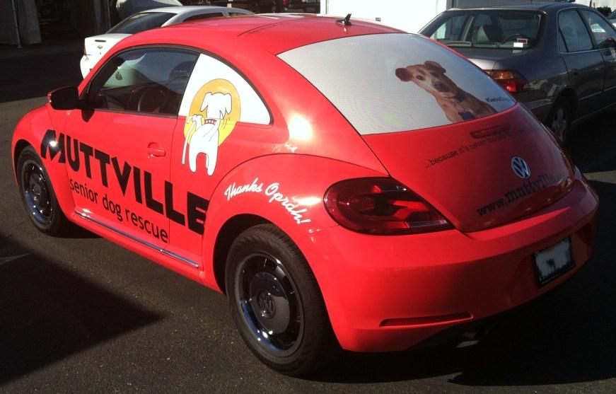 muttville car wrap-08