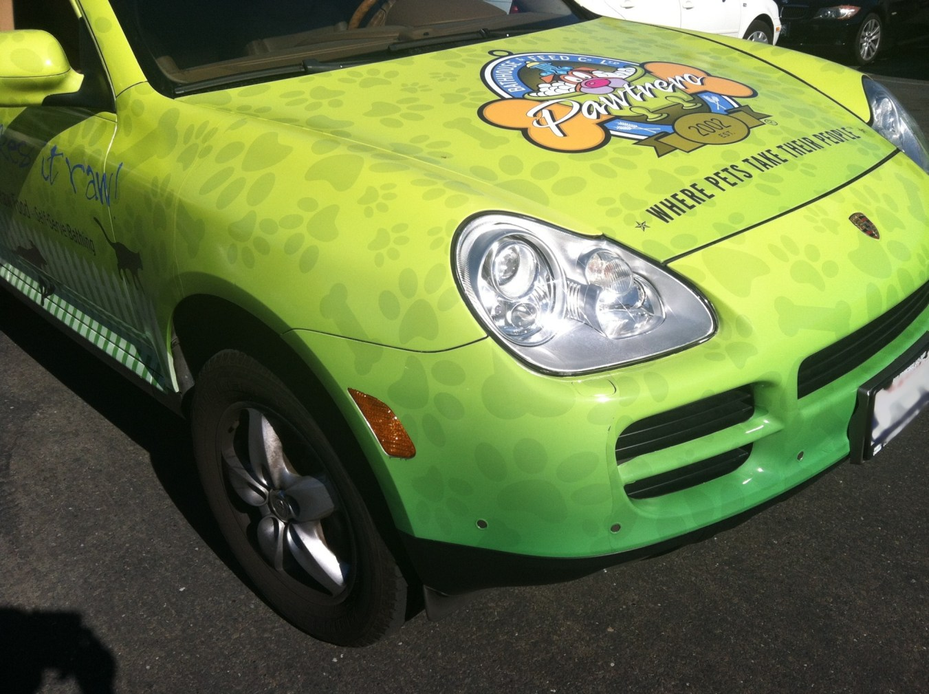 pawtrero car wrap-02