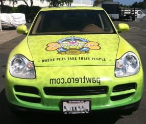pawtrero car wrap