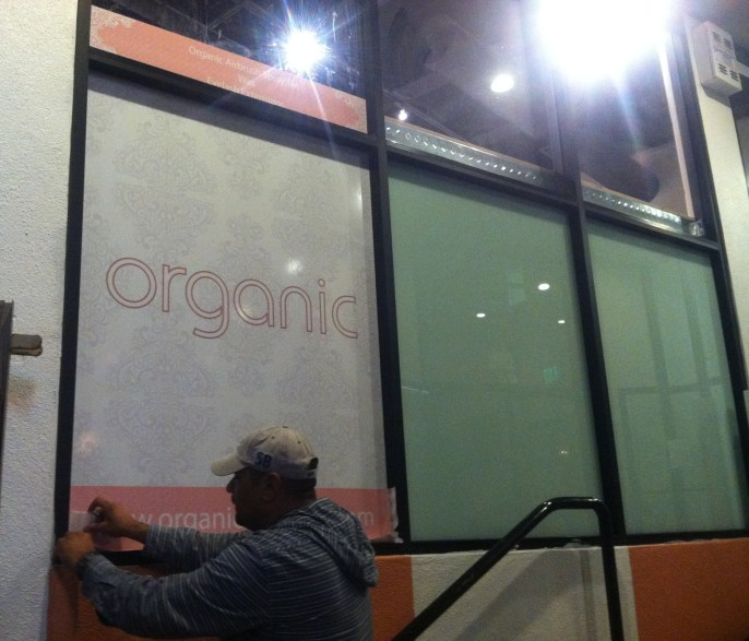 organic shimmer wall wrap-03