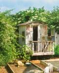 Rosa Haus Garten