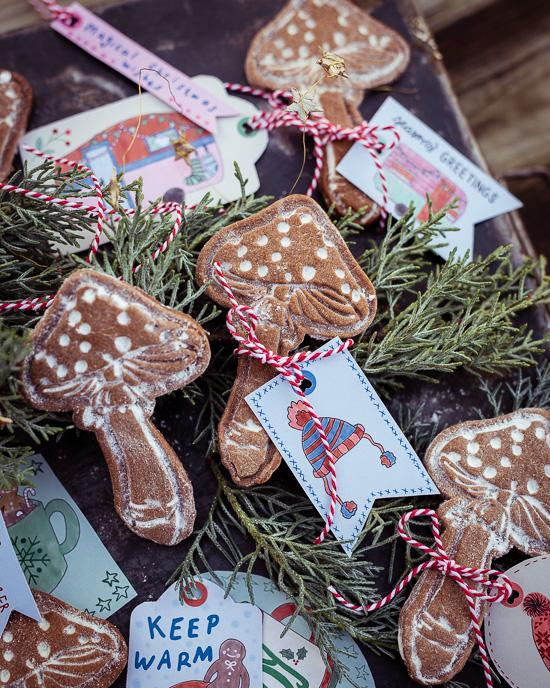 Als Teig für diese Mushroom / Pilz Cookies habe ich den Gingerbread Teig aus Backen Craft und Rote Katze verwendet