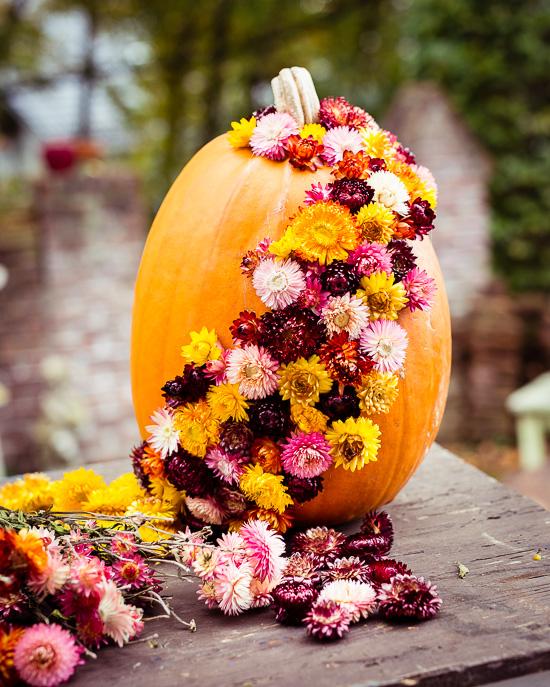 Die Trockenblumen halten mit Heißklebepistole sehr gut auf dem Halloween Kürbis