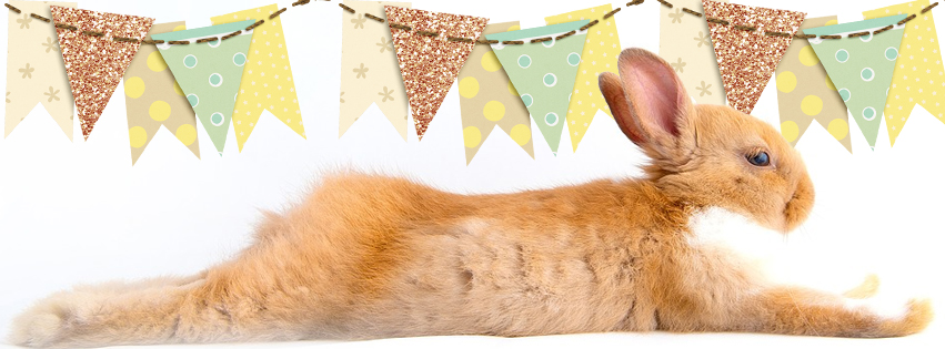 Facebook Easter Cover Photo Banner