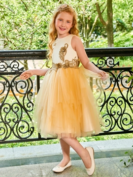 Scoop Appliques Tulle Flower Girl Dress