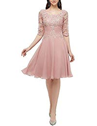 Scoop Neck 1-2 Sleeves Zipper-Back Short Applqiue Chiffon Mother of Bride Dress