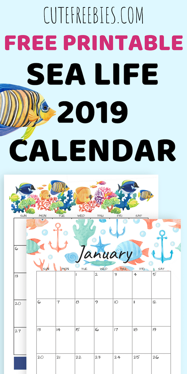 photo relating to Free Printable Graphics identified as 2019 Sea Themed Calendar Printables And Far more! - Lovable