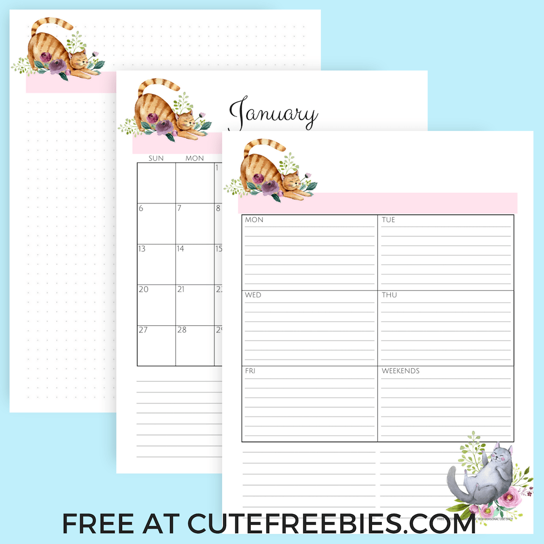 graphic regarding Cute Weekly Planners called Lovely Cats 2019 Planner Printable! - Lovable Freebies For Oneself