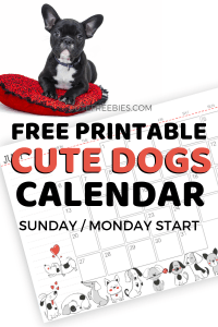 Free 2020 Calendar Printable With Cute Designs! 2020 monthly planners with space for notes. Download your monthly calendar for 2020 now! #freeprintable #cutefreebiesforyou