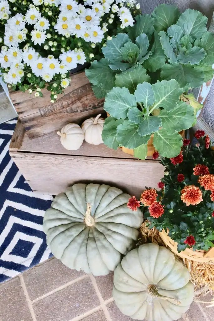 flowers and pumpkins on front porch for fall
