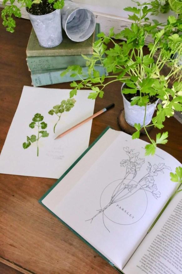 Label DIY pressed plants